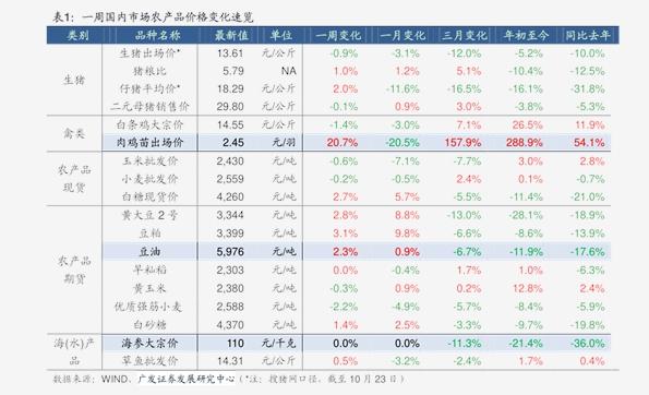 新希望股票今日黄金价格一克,今日黄金白银多少一克